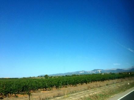 Paysage de Majorque