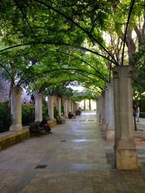 Jardins de la Cathédrale