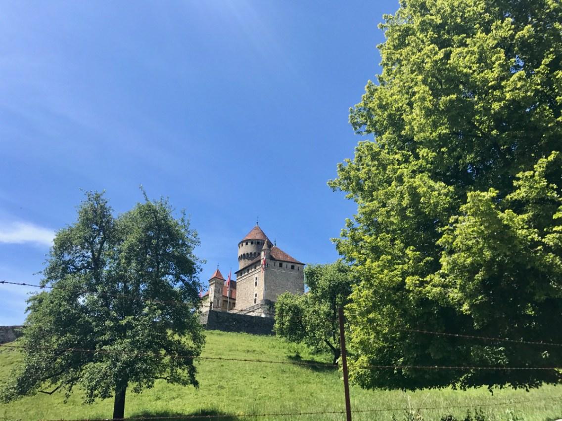 Chateau de Montrottier - 1