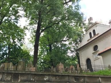 Synagogue Klaus et cimetière