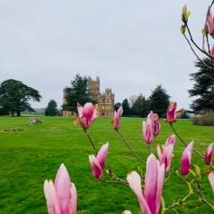 downton abbey2