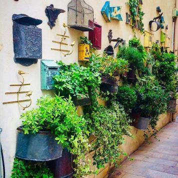 Provenza e Costa Azzurra: Provenza e Costa Azzurra:Saint-Rèmy