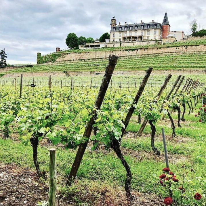 Strada dei vini Alsazia: ROUFFACH