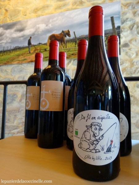 Domaine-Enclos-de-la-Croix-vin-bio-Languedoc