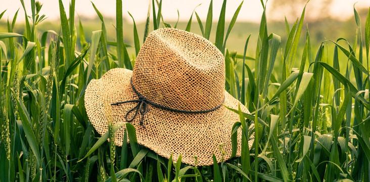 [Samedi Shopping] Tête à chapeaux