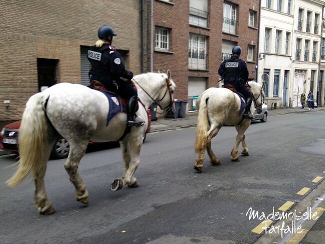police à cheval Lille