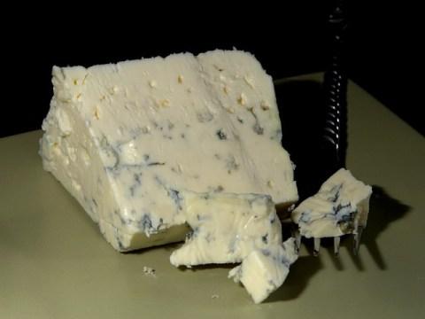 fromage bleu danois , moisissure bleue , moule , moisissure noble , produit laitier , alimentation