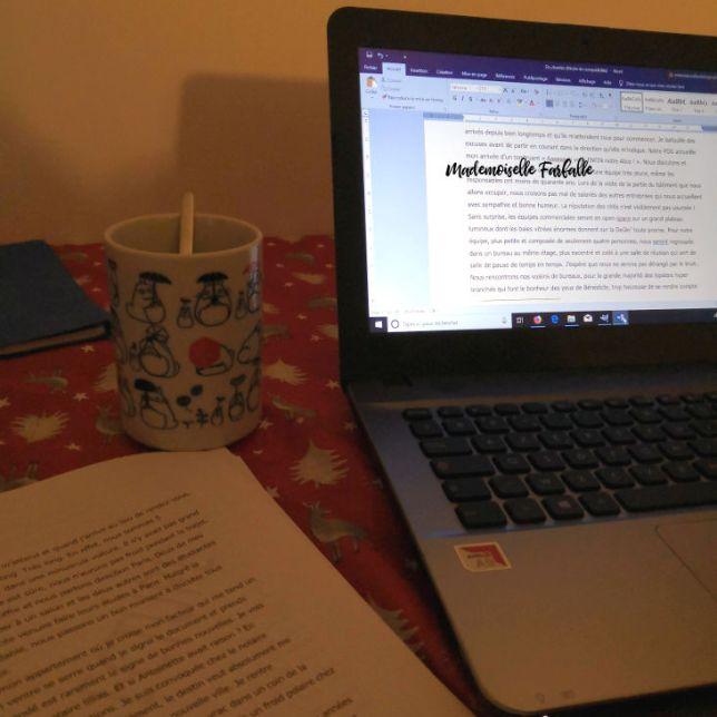 écrire un roman