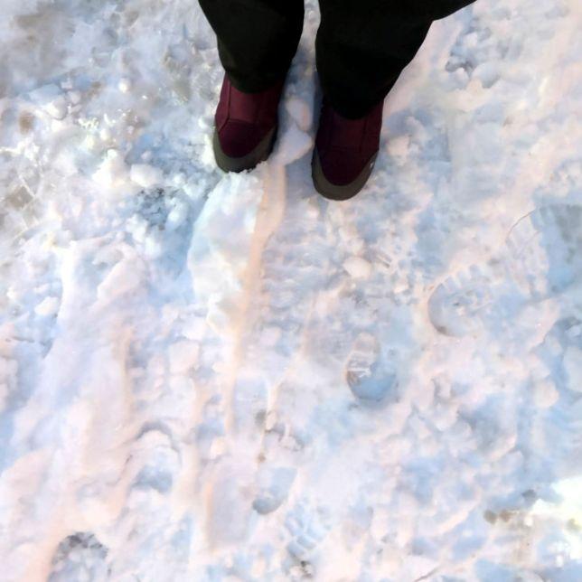 neige à Lille