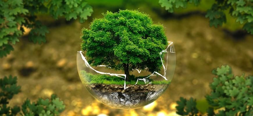 Empreinte carbone: mon bilan et ma marge de progression