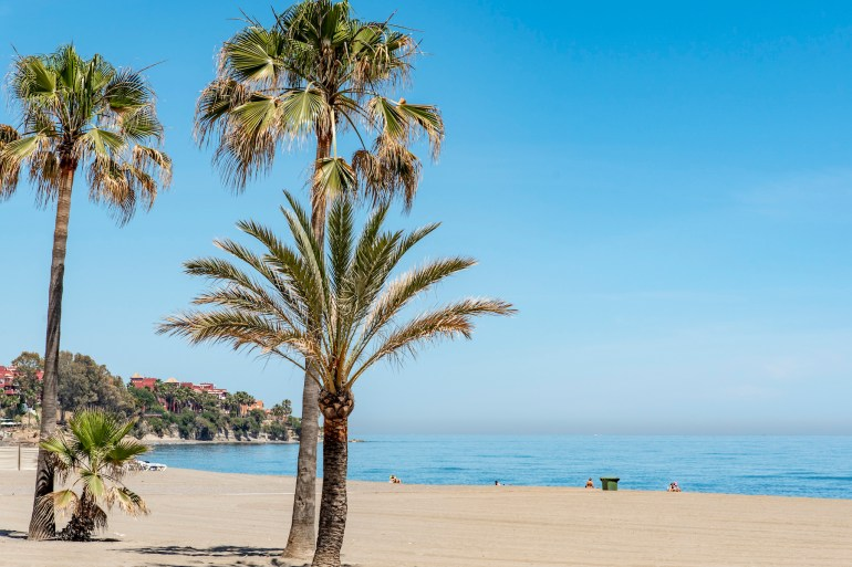 Sandy beach with palm trees in Estepona