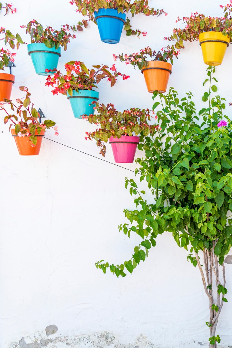 Wall of colourful pots of plants in Estepona