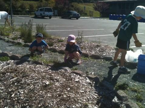 Madera Kids helping pull weeds