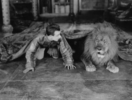 man emerging from under rug to find live lion - metaphor for inventive