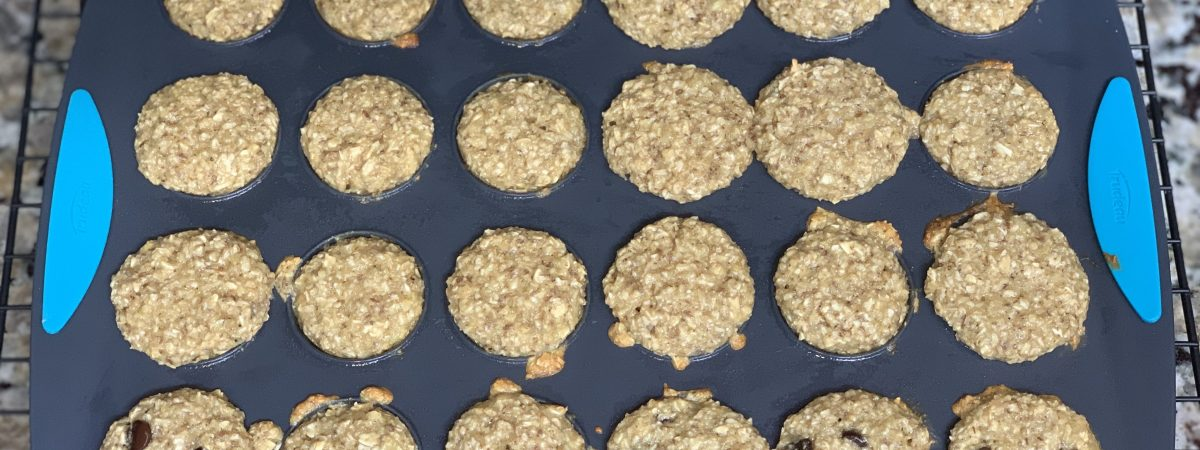Go-To Picky Eater Muffin Recipe