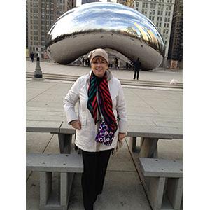 Millinium Bean Chicago