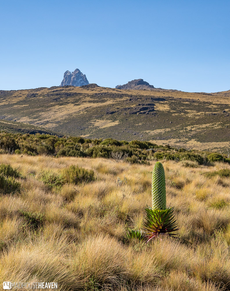 Mount Kenya peaks visible behind one of the many ridges on a clear sunny day