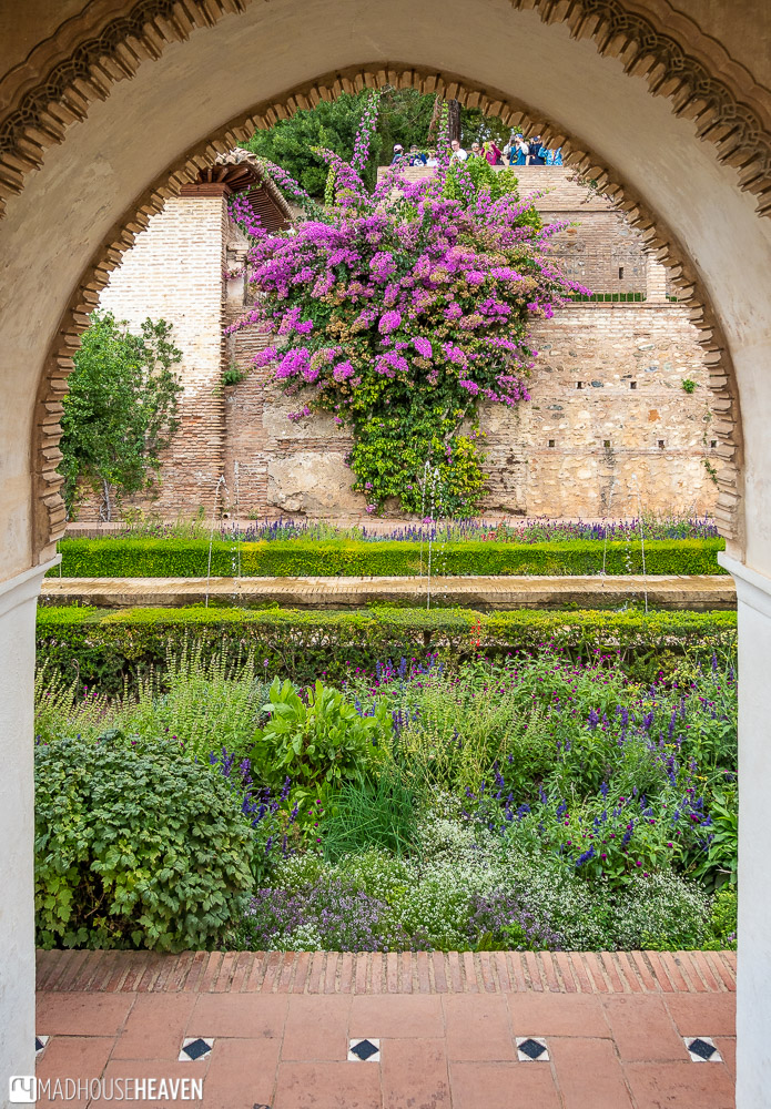 Lush, green vegetation grows everywhere in the Patio de Acequia, even on its walls