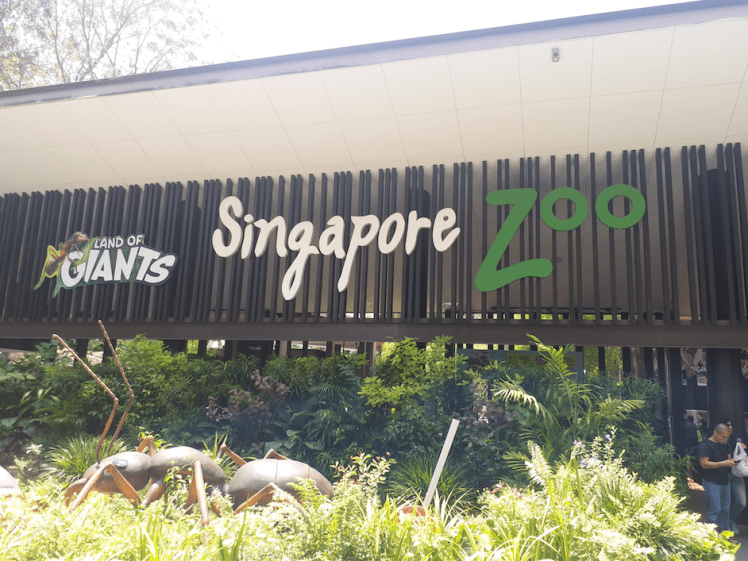 5 Singapore Zoo.png