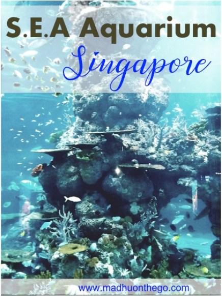 SEA Aquarium Singapore-Major highlights .jpg