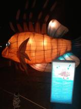 9.Lantern park, Bintan