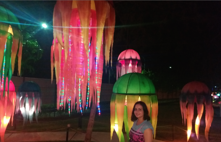 Lantern park, jelly fish.png