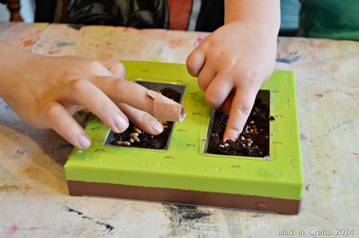 Kiwi Crate  Planting Seeds #KiwiSummerFun #ad