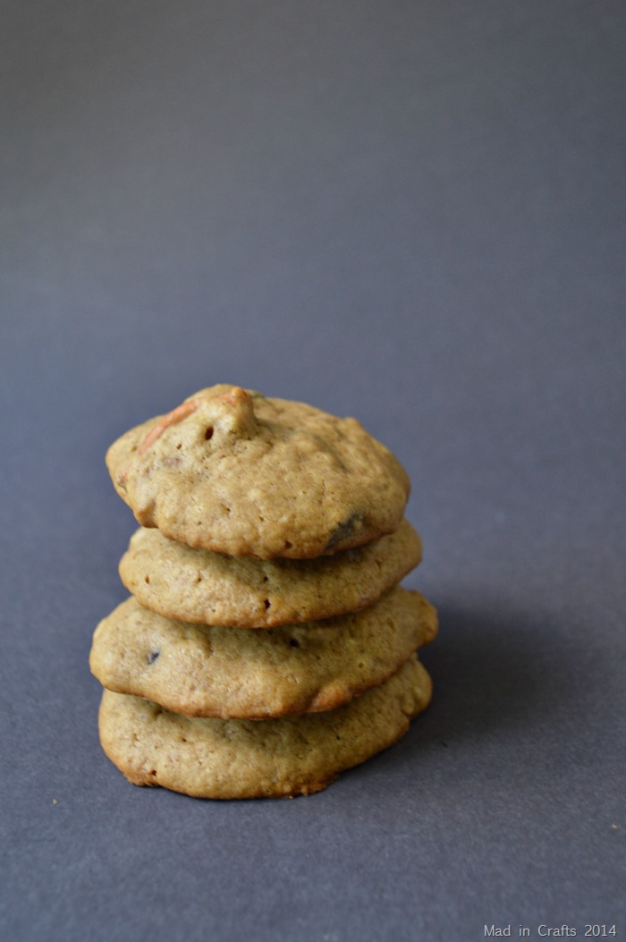 Chocolate Stout Chocolate Chip Cookies