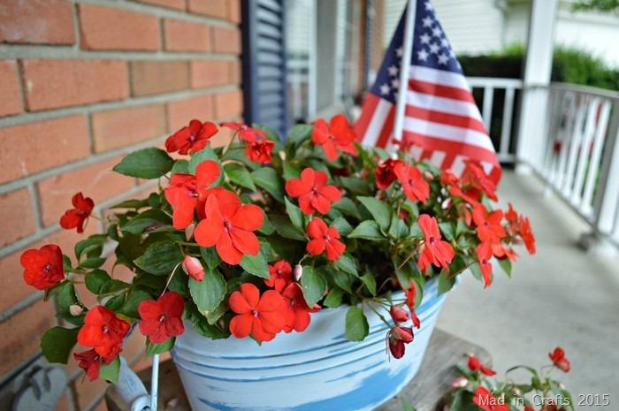 MiracleGro Flowers