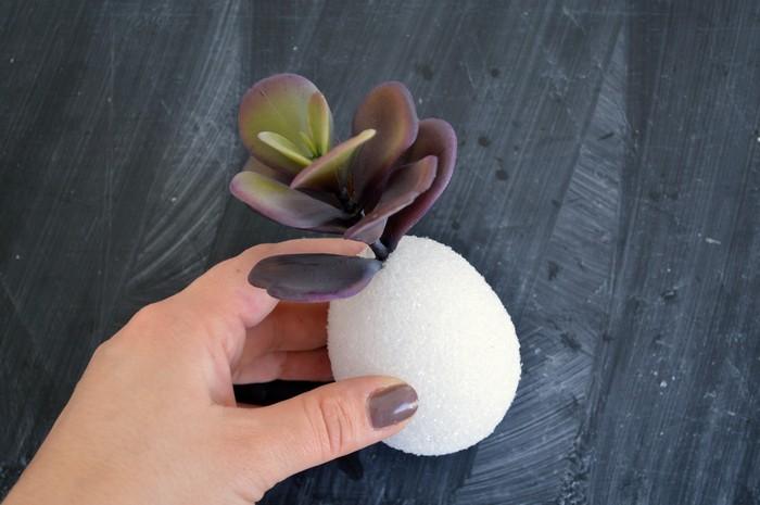 insert succulent into foam egg