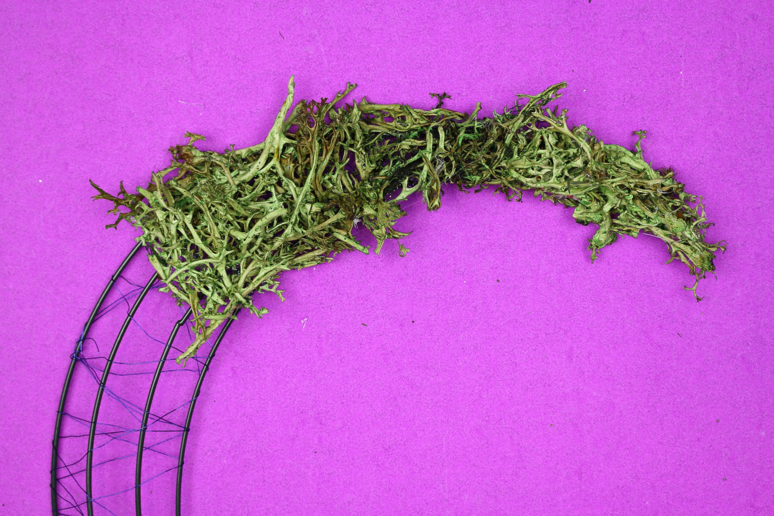 applying reindeer moss covered to a crescent moon wreath