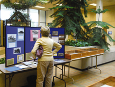 County Archives Day (2)
