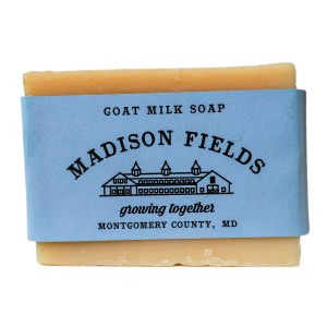 Lavender Goat Milk Soap by Madison Fields