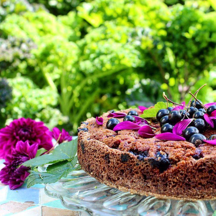 Solbærkage med chokolade - Plantebaseret / Vegansk opskrift - Mad med glød