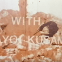 Yayoi Kusama: Self-Obliteration, Jud Yalkut, 1967 (short film)