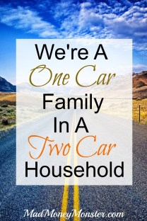 Pinterest pin - one car family