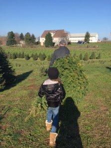 xmas tree - financial mistakes