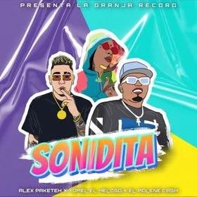 Alex Paketeh, Molene Cash, Yomel El Meloso - Sonidita
