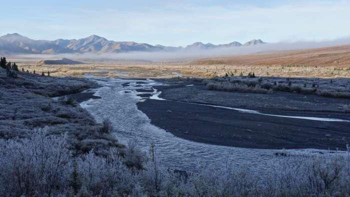 "morgens im ""Denali National Park"" (Alaska, USA)"