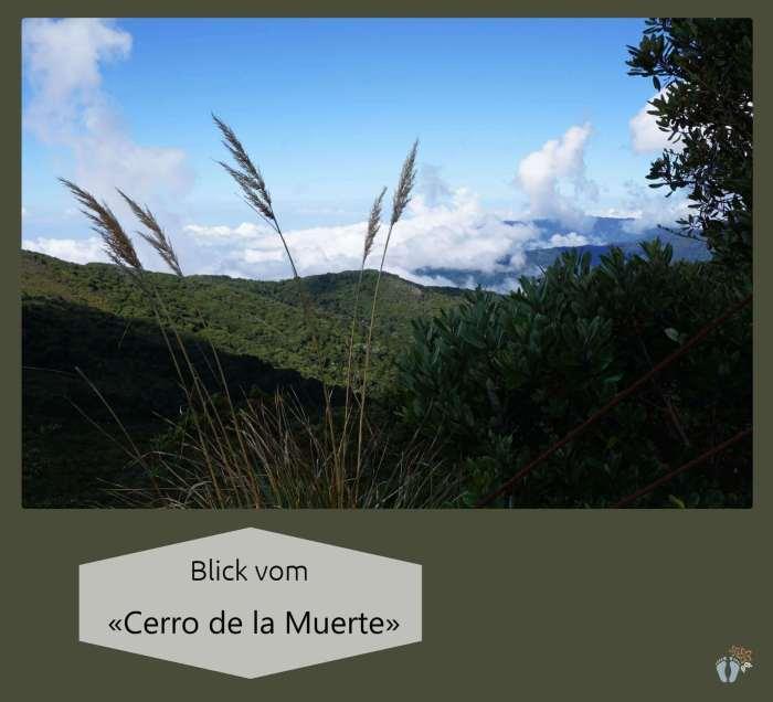 Blick vom «Cerro de la Muerte» {Reisetagebuch Costa Rica: Tag 14}