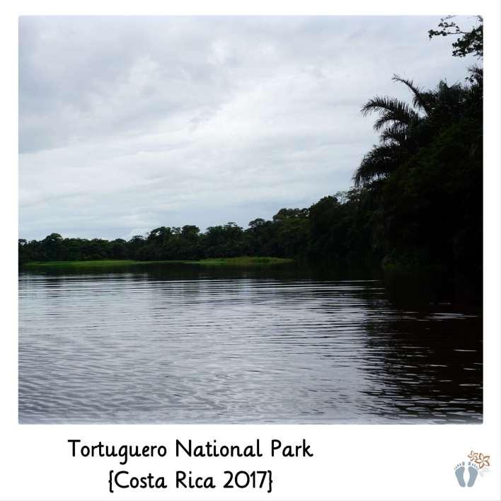 Bootstour im «Tortuguero National Park» {Costa Rica 2017}