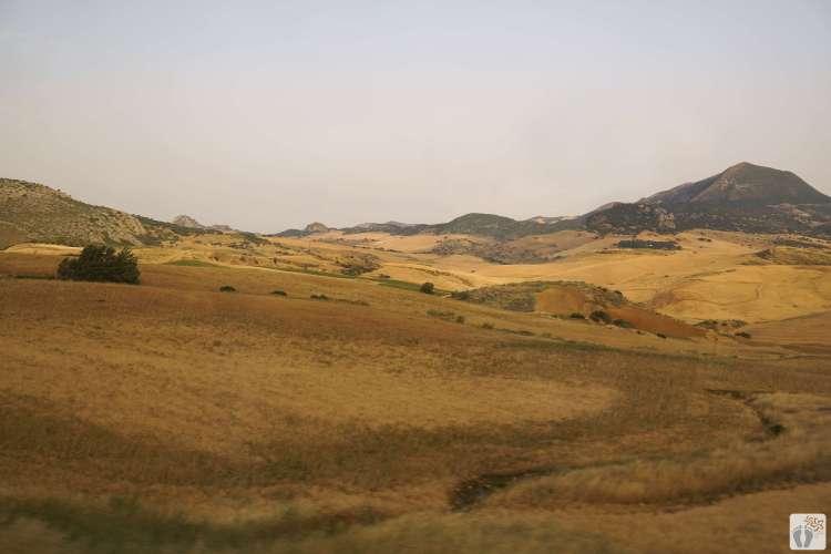 bei der Zugfahrt von «Ronda» nach «Málaga» {Andalusien Reisetagebuch}