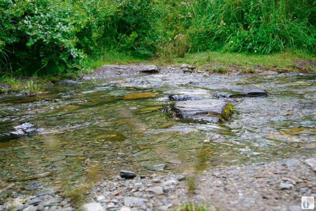 Wanderweg «Sawpit Gully Trail» {Reisetagebuch «Roadtrip durch Neuseeland mit dem Bus»: «Arrowtown»}