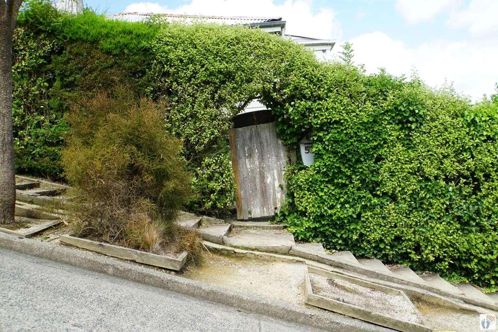 Die steilste Straße der Welt: «Baldwin Street» {Reisetagebuch «Roadtrip durch Neuseeland mit dem Bus»: «Dunedin»}