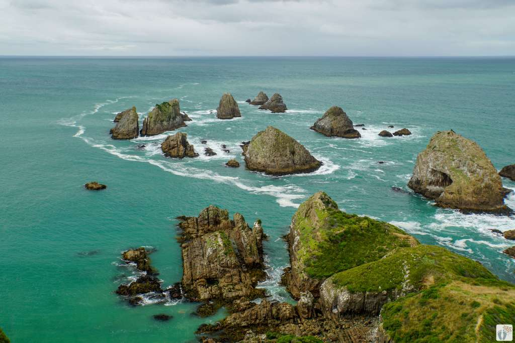 «Nugget Point» {Reisetagebuch «Roadtrip durch Neuseeland mit dem Bus»: «Catlins Coast»}