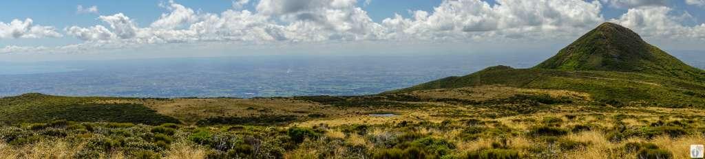 Ahukawakawa Swamp {Reisetagebuch «Roadtrip durch Neuseeland mit dem Bus»: Egmont National Park}