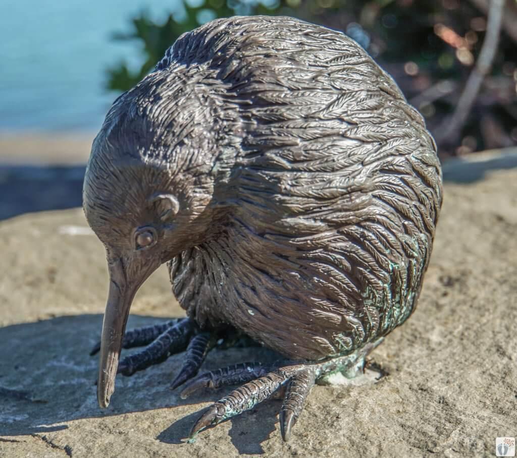 Kiwi-Wanderweg - Kaputerangi {Reisetagebuch «Roadtrip durch Neuseeland mit dem Bus»: Whakatāne}