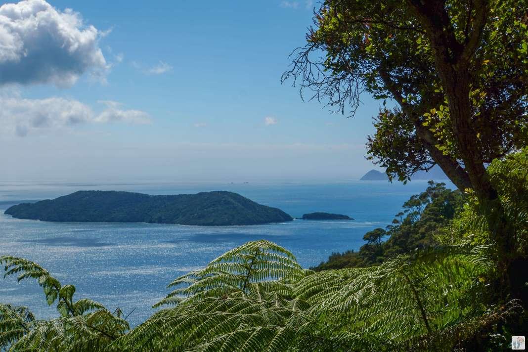 «Marlborough Sounds» mit «Motuara Island» {Reisetagebuch «Roadtrip durch Neuseeland mit dem Bus»}