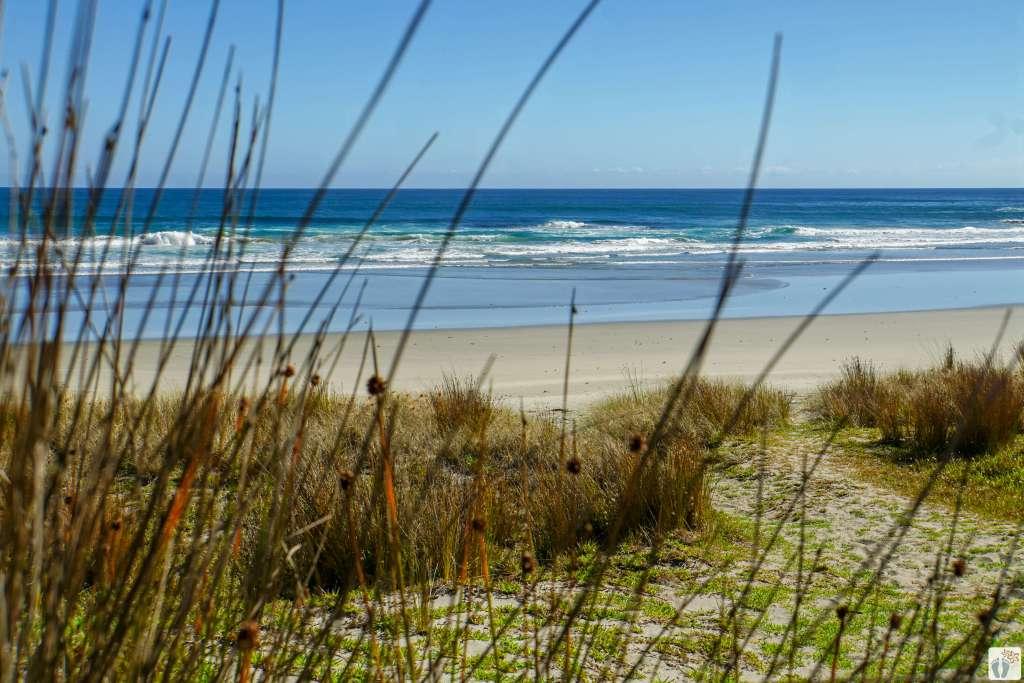 Ninety Mile Beach {Reisetagebuch «Roadtrip durch Neuseeland mit dem Bus»: Northland}