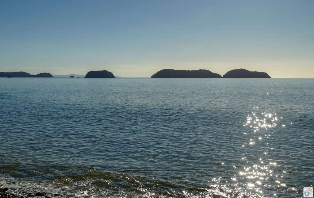 Coastal Walkway: Port Jackson {Reisetagebuch «Roadtrip durch Neuseeland mit dem Bus»: Northern Coromandel}
